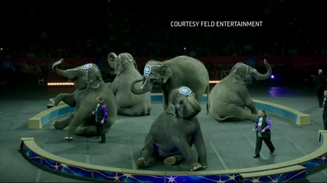 Ringling Bros. Circus to Close After 146 Years