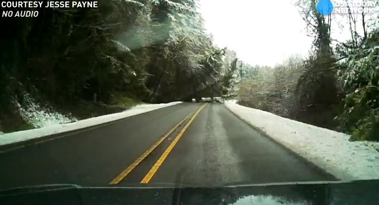 Dashcam video shows tree fall, just miss car