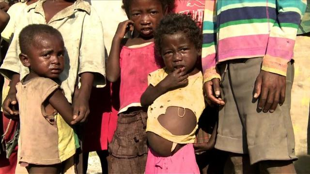 The World Food Programme says close to a million people are facing starvation in southern Madagascar, as an ongoing drought causes harvests to fail, leaving whole villages dependent on food aid. Video provided by AFP
