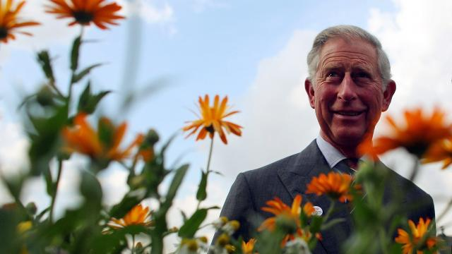 The British royal co-authored an illustrated book about climate change. Video provided by Newsy