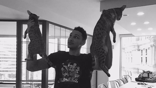 Philadelphia 76ers fans have been raising their house cats over their heads following each victory.