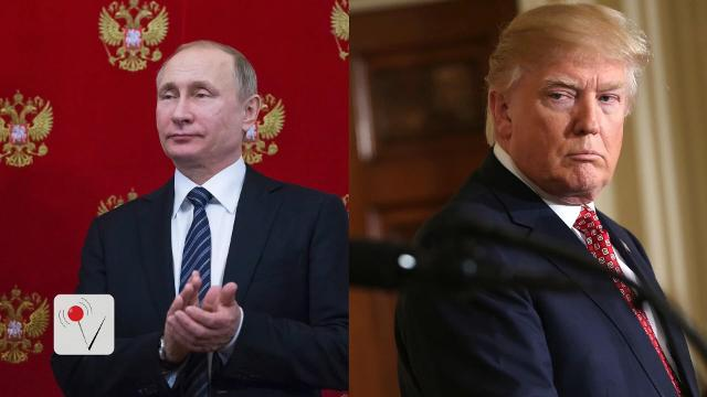 The Kremlin has announced that Donald Trump and Russian President Vladimir Putin may meet prior to the G20 summit in July. Matt Hoffman reports.
