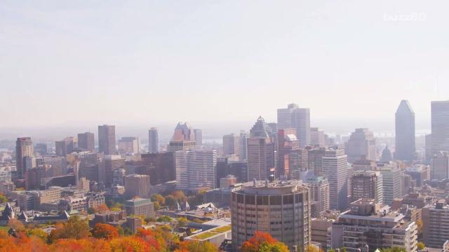 Move over Paris! Montreal is now the top city for students. Maria Mercedes Galuppo (@mariamgaluppo) has more.