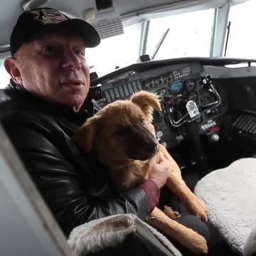 Pilot flies dogs to a town that can adopt them