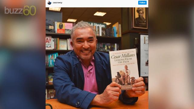 'Dog Whisperer' Cesar Millan on what pets teach us about living well