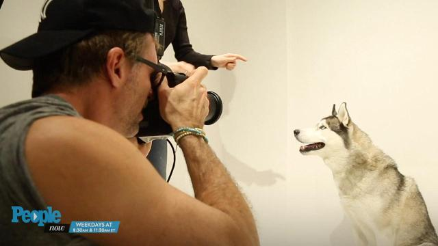 Richard Phibbs helps shelter animals find forever homes through his photography