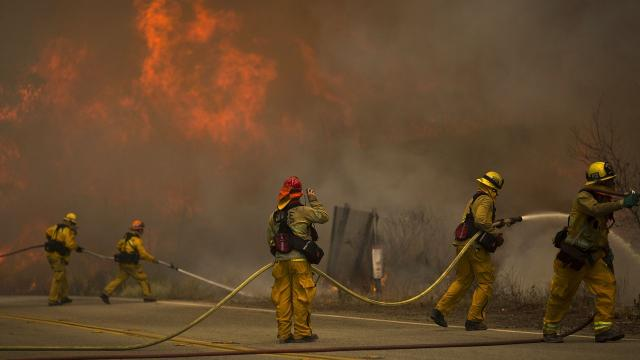 We have our most comprehensive look yet at how humans drive wildfires. Video provided by Newsy