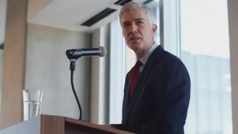 Supreme Court nominee Neil Gorsuch goes before the