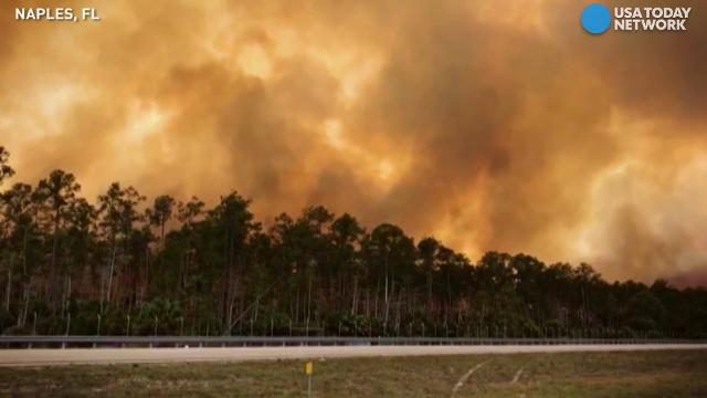 Wildfire smoke blocks out Florida sunshine