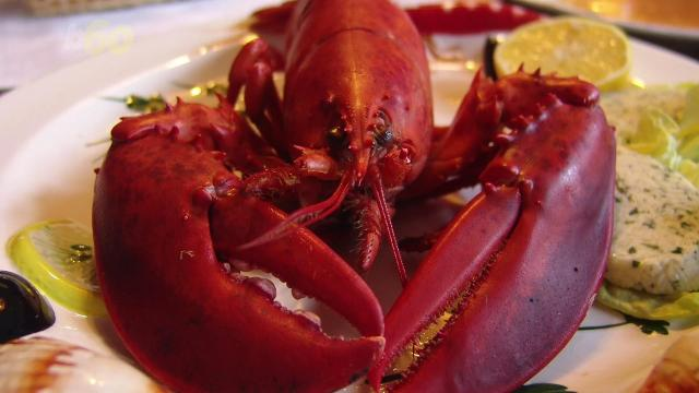 China is obsessed with American lobster