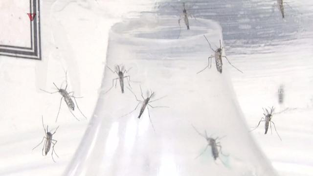 The CDC is worried about sperm from Florida carrying Zika virus