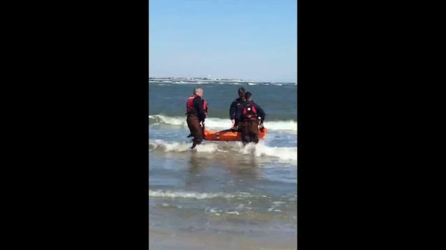 Raw: Crews Rescue Stranded Dolphin on NJ Beach