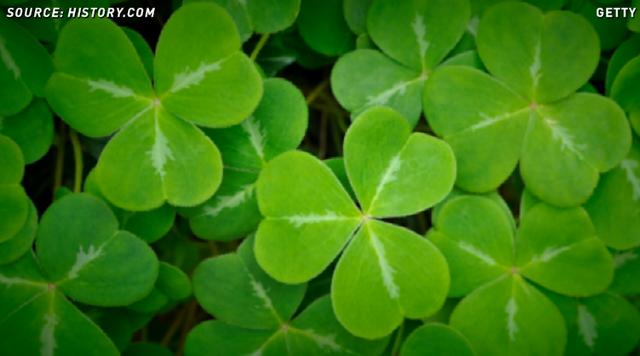 Celebrate St. Patrick's Day with these 5 fun facts