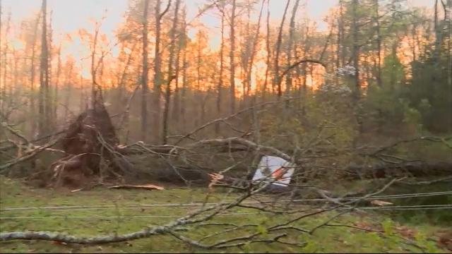 Severe SC Storms Leave One Dead