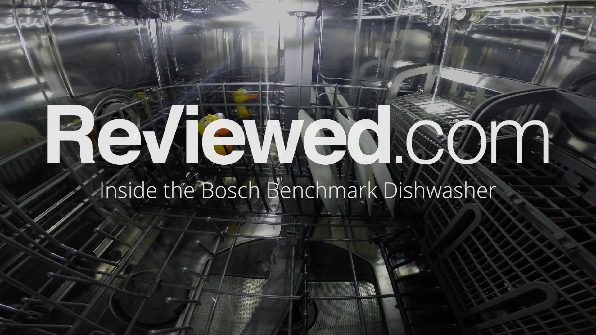 The Worst Things To Put In Your Dishwasher Reviewed Dishwashers