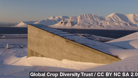 Global Warming Prompts Norway To Strengthen Its Doomsday Seed