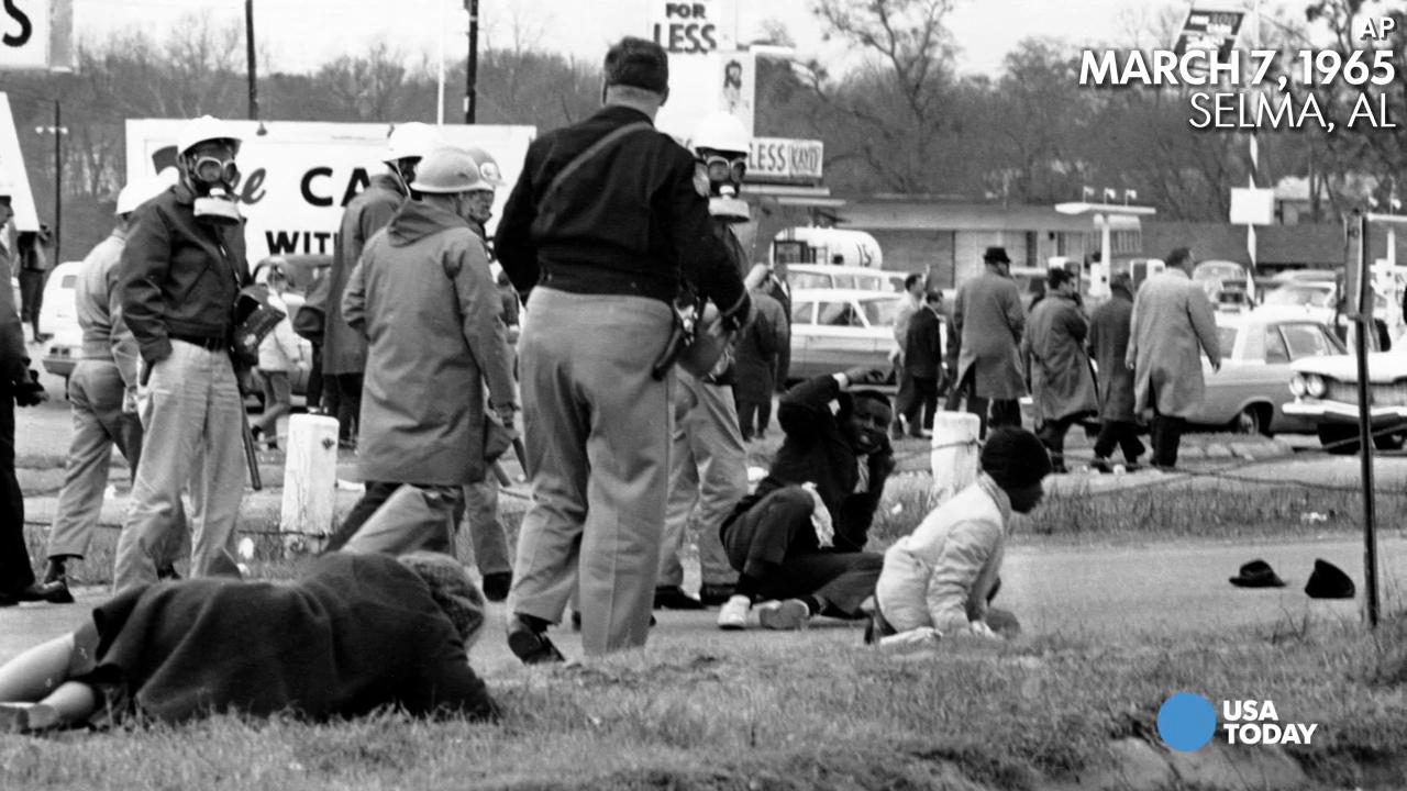 Selma: Everything you didn't know but wanted to ask