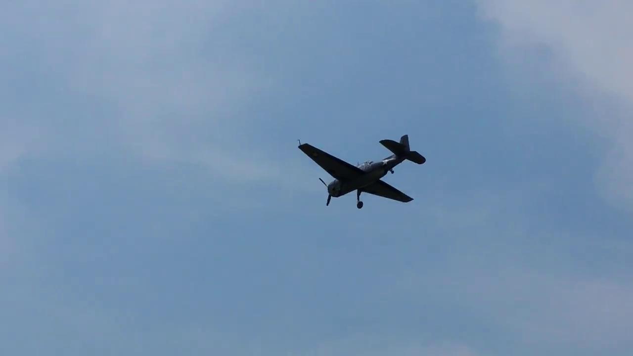 Vintage WWII Plane Makes Emergency Landing at Reagan National