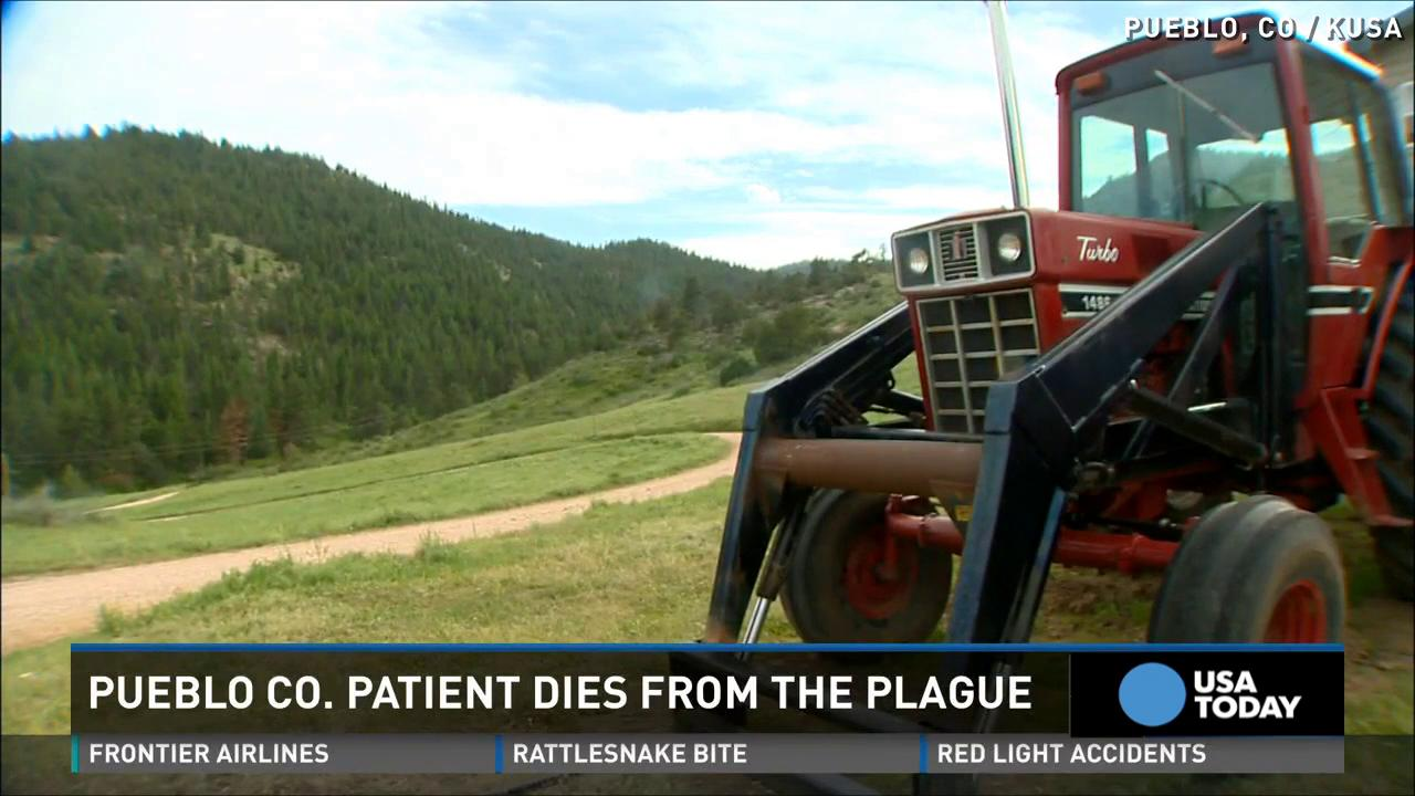 Colorado resident dies of plague