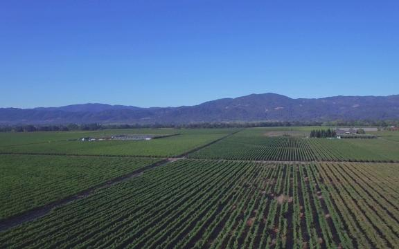 Drone tour of the Napa Valley