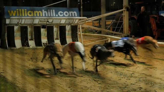 Once a hugely popular working man's sport, London's last greyhound track is closing, marking the final demise of dog racing in in the capital and closing a chapter of British social culture