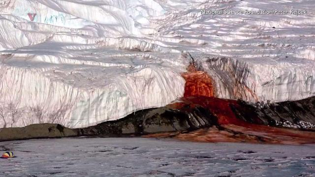 100-year-old mystery of glaciers 'bloody red falls' solved
