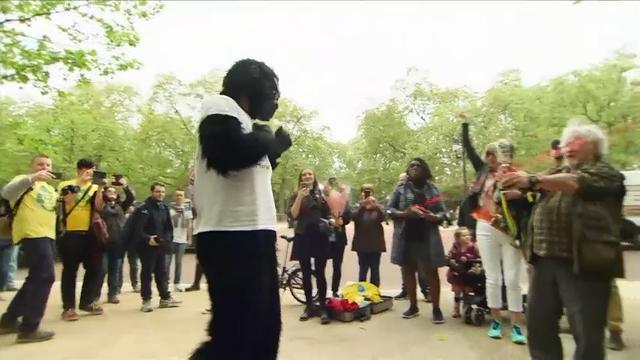 "A man dubbed ""Mr. Gorilla"" crawled his way to the finish line at the London Marathon six days after the race began.  He put on his gorilla outfit and entered the race to raise money to protect endangered gorillas in Africa. (April 29)"