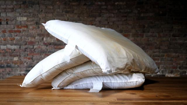 Pillows are grosser than you could possibly imagine. Luckily, they're easy to clean.