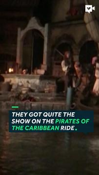 Johnny Depp showed up at Disneyland and surprised the riders on the Pirates of the Caribbean ride.