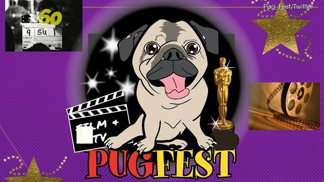 In London, Pug pups will be flooding the red carpet at the Pugfest Manchester. Alyse Barker (@IamAlyseBarker) has the story.