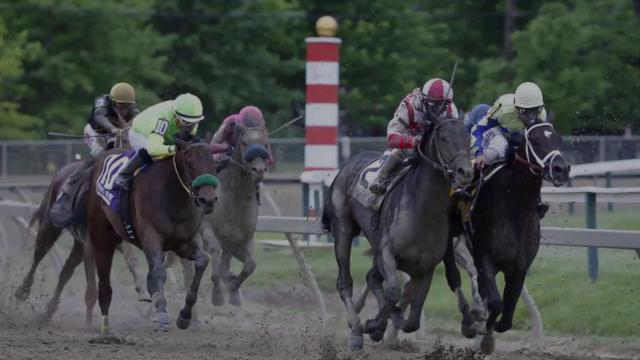 Always Dreaming had a chance for a Triple Crown bid at the Preakness Stakes but was thwarted by Cloud Computing, a horse that didn't race at this year's Kentucky Derby.