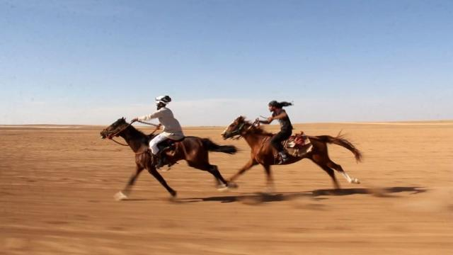 Dozens of men and young children, their faces enveloped in red checkered keffiyehs, watch as about 20 horses race each other in the northern Syrian desert.