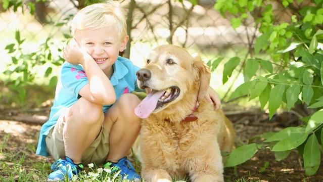 Mulligan the golden retriever isn't just a lovable Southern pup. This extraordinary dog was diagnosed with cancer, resulting in the loss of one of his legs. But, that disability hasn't stopped him from playing with and sharing his joy with others.