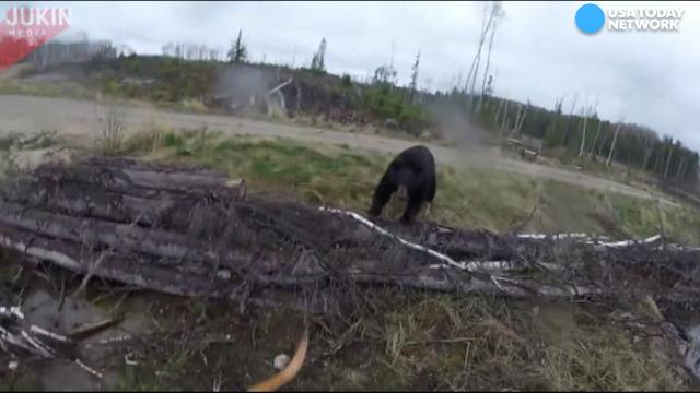 Canadian hunter fends off a bear attack