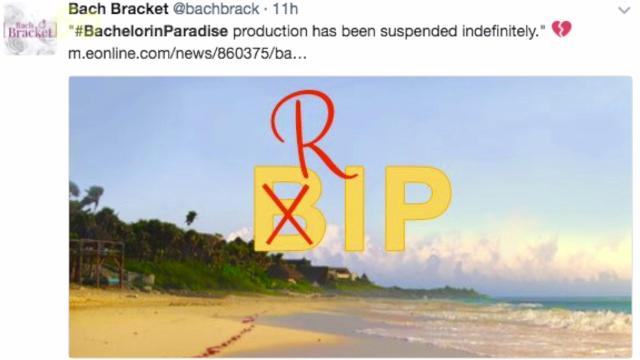Apparently, there is a line that can't be crossed on 'Bachelor in Paradise' and now the show has been suspended indefinitely.