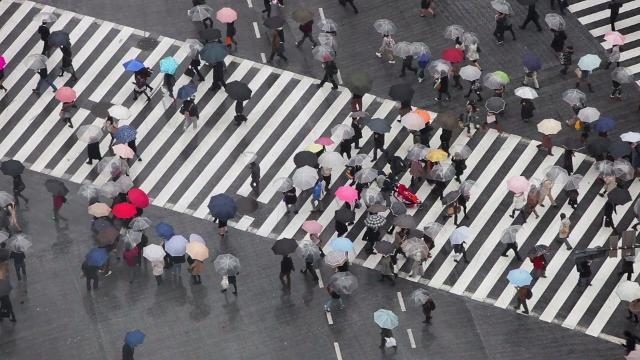 The world's busiest intersection will blow your mind