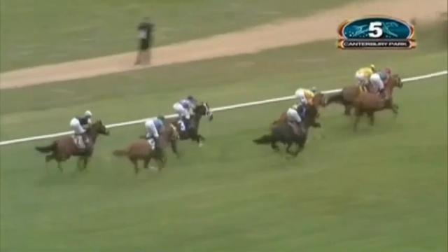Horse gets loose, jockeys stop 'awful' situation